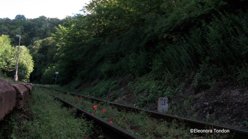 ferrovia Křivoklát